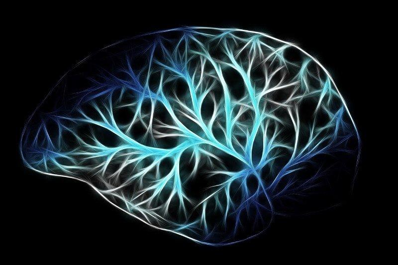 Grafische Darstellung eines Gehirns mit Nervenzellen