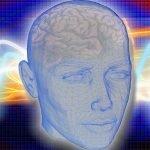 Grafische Darstellung eines Kopfes mit Gehirn